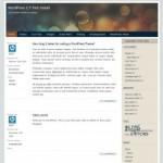 SoftBubble WordPress Theme
